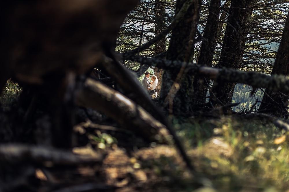 Peeking through the trees in Banff