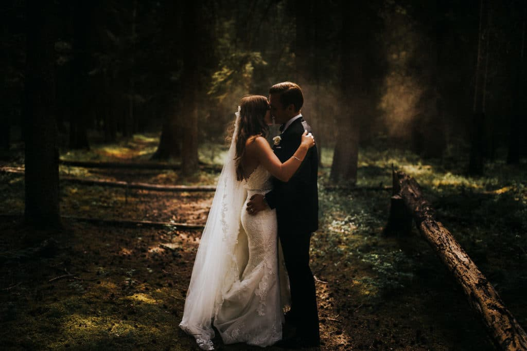 In the woods in Banff a Banff wedding photographer photographs a bride and groom holding each other