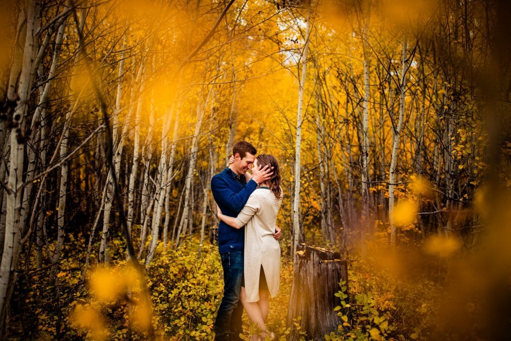 Autumn and Fall engagement photos photographed in Fish Creek Calgary by Calgary wedding photographers